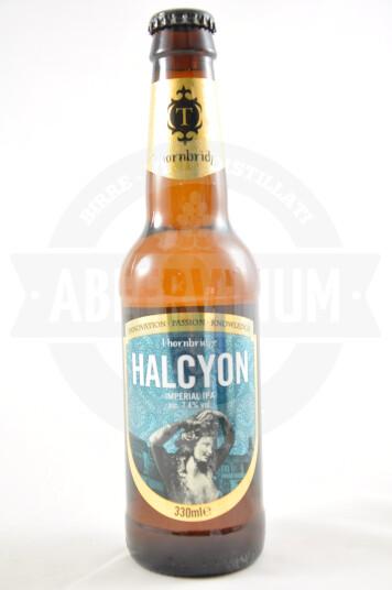 Birra Halcyon 33ccl