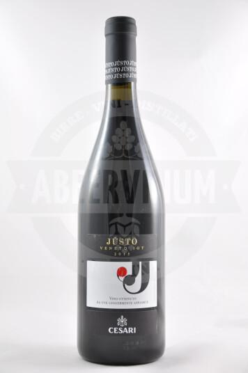 Vino Jùsto Veneto Rosso IGT 2015 - Cesari
