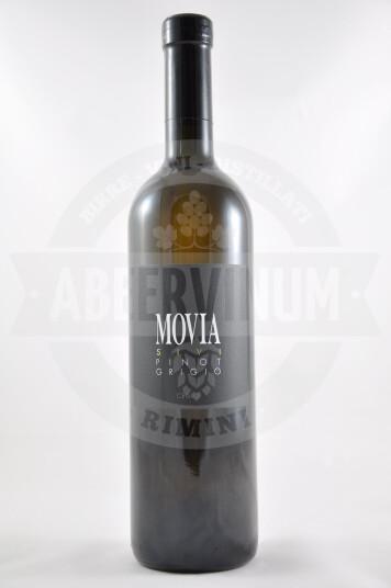 Vino Sloveno Pinot Grigio 2014 - Movia