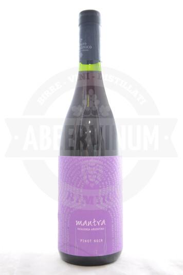 Vino Argentino Mantra Pinot Noir 2019 - Secreto Patagonico