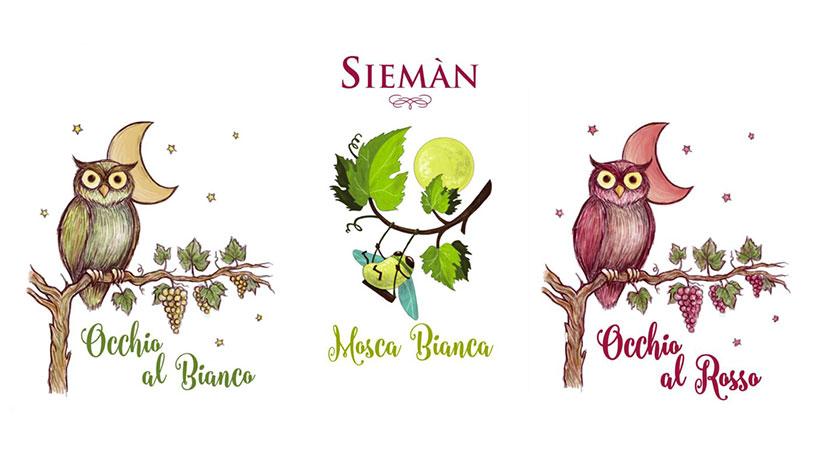 Sieman